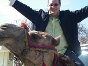 Itier-camel-Cairo