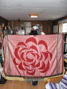 The Red Rose out of Concrete Shawl