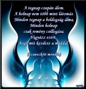www.tvn.hu_833a184b78bad23d72e7be4b70e72674