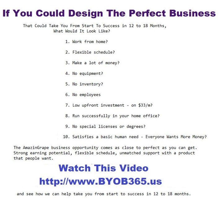 If I Could Design The Perfect Business