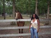 ME AND THE HORSE