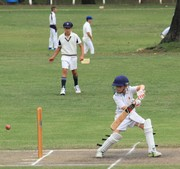 Cricket vs Rondebosch