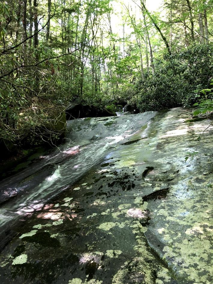 Steeltrap Creek 14