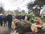 Henbury walking group admiring the wood cravings