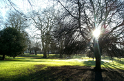 St Andrews Park in winter morning light.