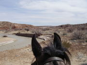 Paria River in Escalante Mts in southern Utah