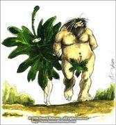 Adamo ed Eva versione Afgana