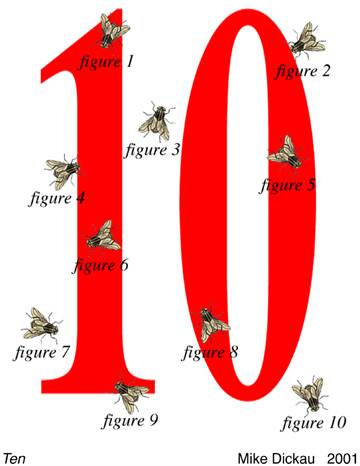 2001 TEN POSTCARD