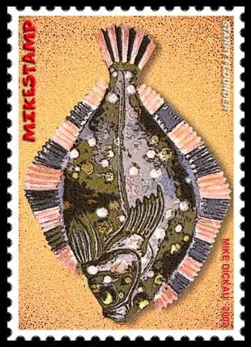2002 Starry Flounder