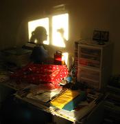 Self.SunShadow