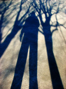 BornOfTheTrees
