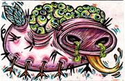060109 may swine bug colored