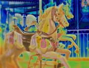 Dreamin' horses