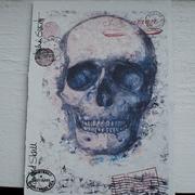 Painted Skull 8 x 6