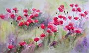 aqua-poppies-2