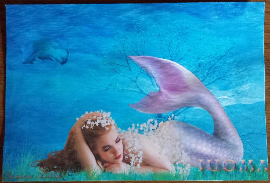 Mermaid - digital art