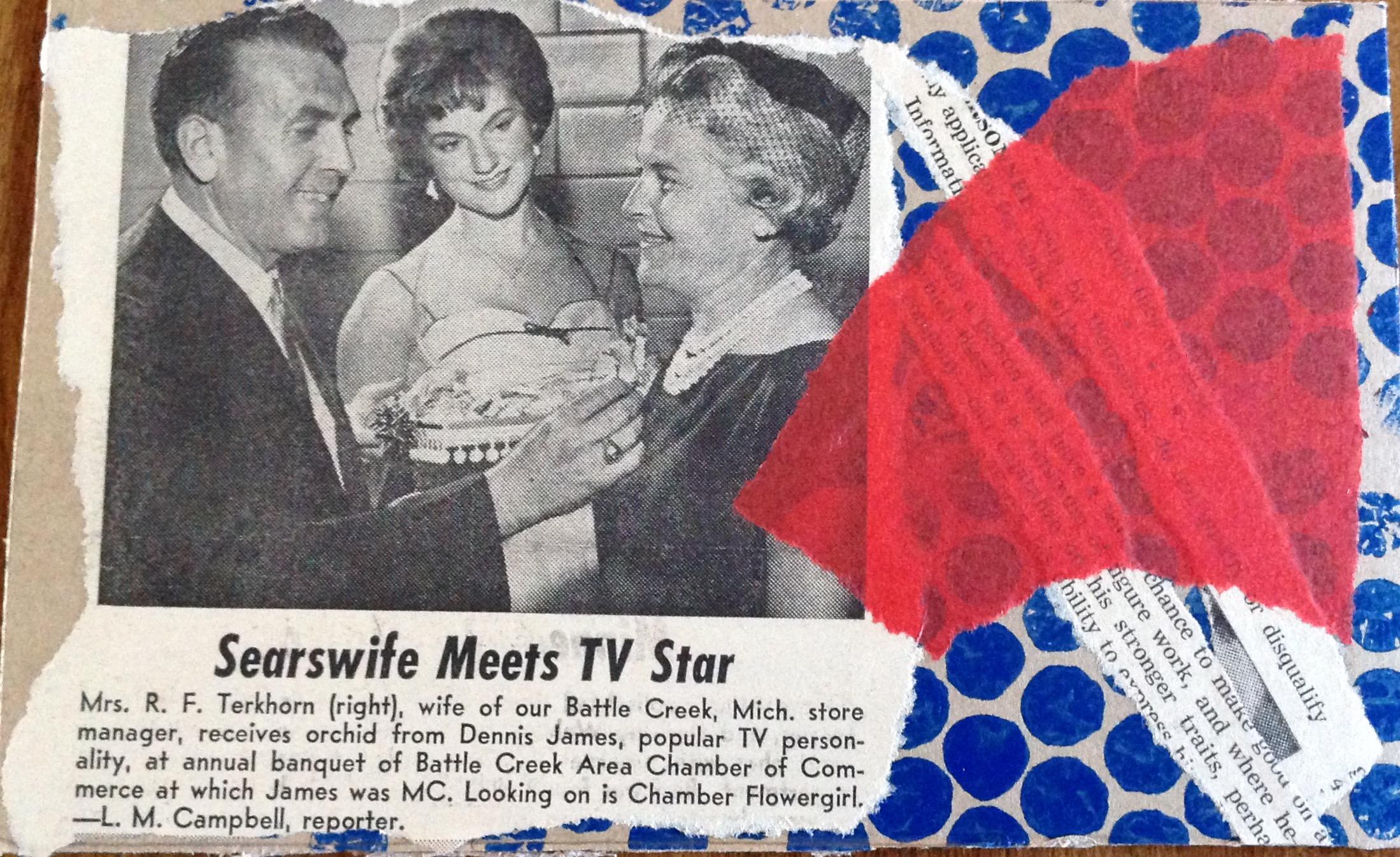 Sears Wife Meets TV Star by tonipoet