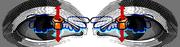 wings eyes copy
