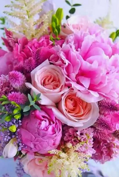 Ilse  flowers
