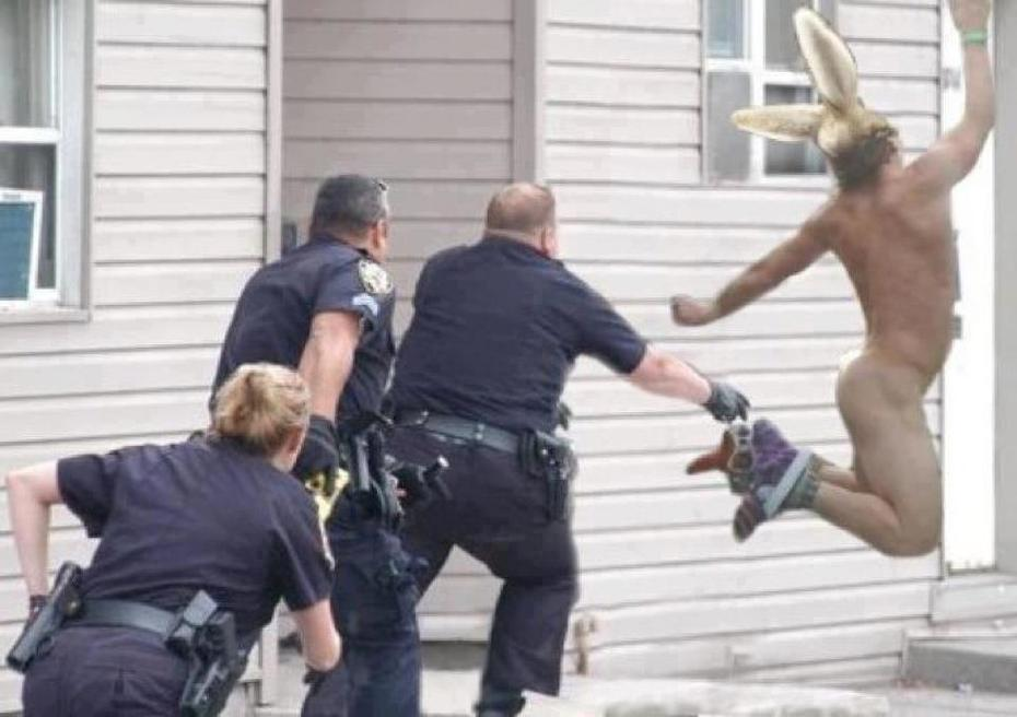 police state easter bunny