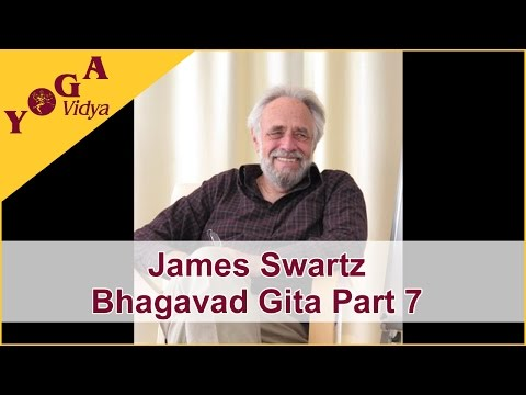 James Swartz Part 7 Lecture about Bhagavad Gita