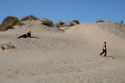 my children playing in the sand dunes