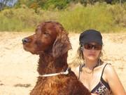 Holidays in Algarve – Tavira 2009