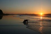 Sunset at Downhill beach
