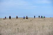 ISCV Open Field Trial 2013 262