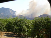 Wild Fires in Cal.