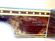 W. (William) Temlett origin zither banjo serial number 1218