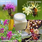 4 reasons to choose raw honey