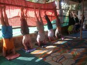 alpesh yoga teachers