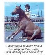 Johnny and Sheik