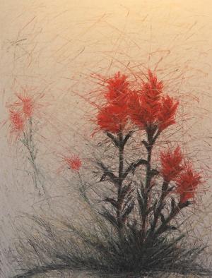 Paintbrush 5/'07