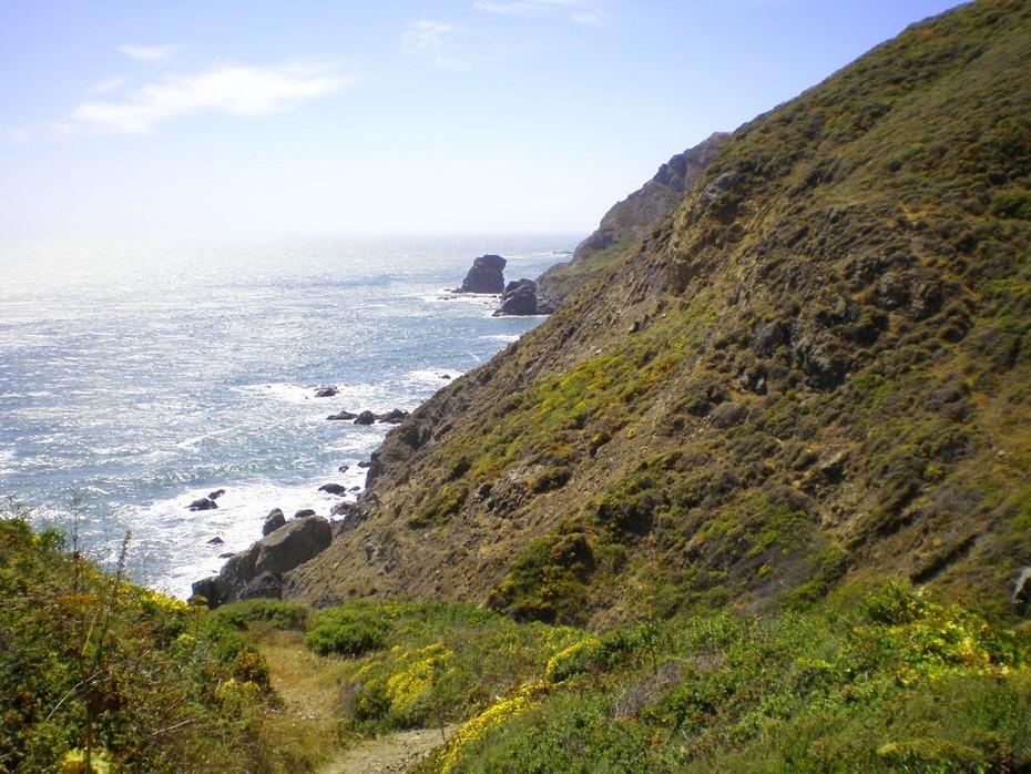 Along the Coastal Trail