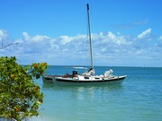 Sanibel Island Cruise