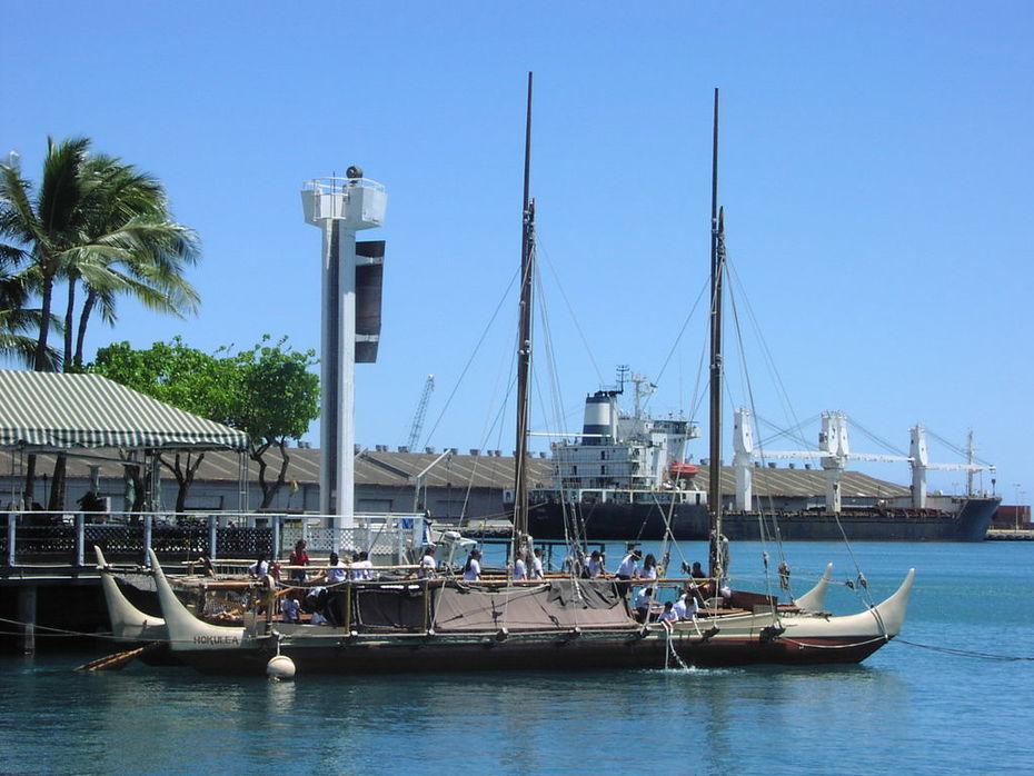 cat hawaii 3