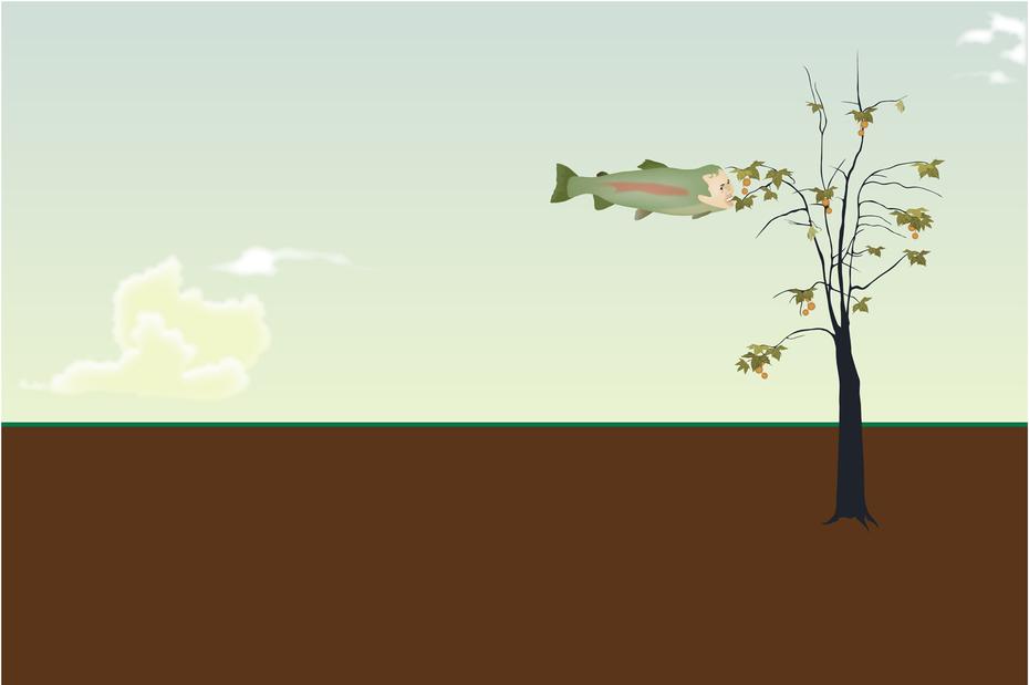 Teach a man to fish...
