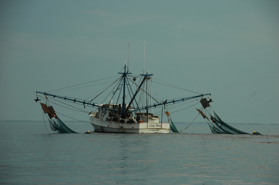 Ms. Amie shrimp boat