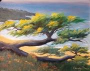 Scenic Drive Carmel Cypress