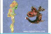 cdn soouth creatures