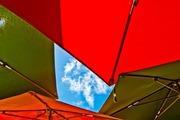 Umbrellas, This Way!