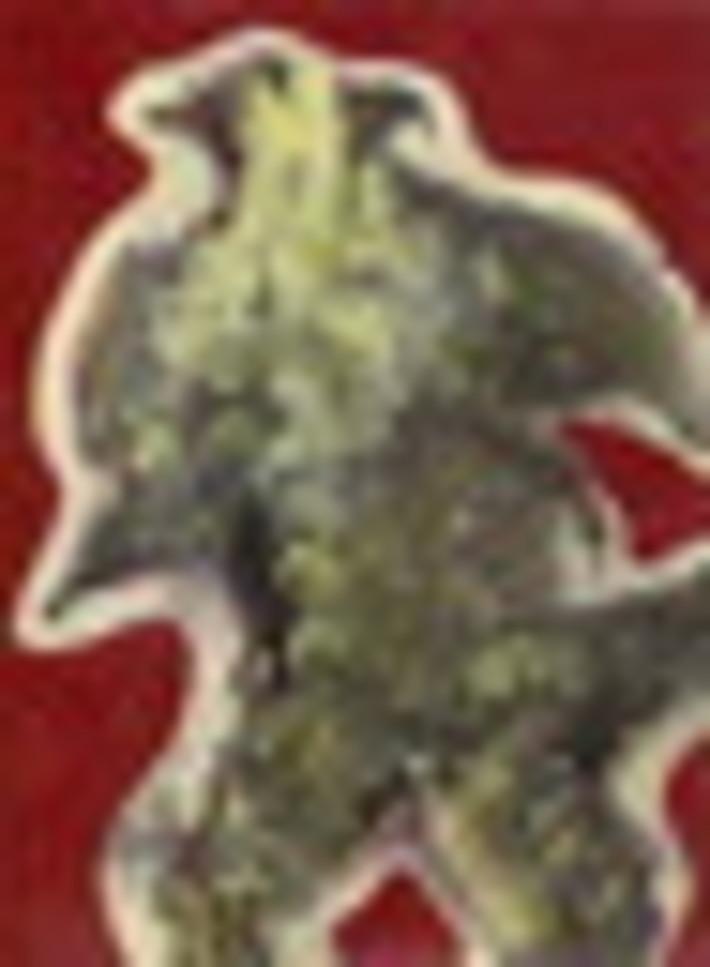 Sistine Chapel fragment