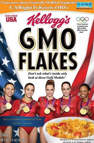 GMO FLAKES