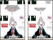Media polls