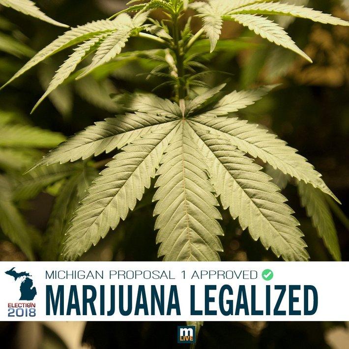 Michigan votes to (puff puff) pass legal recreational marijuana