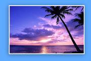 Pacific Ocean States!