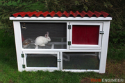 Rabbit Hutch Feature