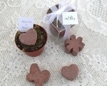Earthbloom Flower Pot Favors, They Grow!